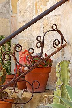 Art Block Collections - The Cactus Garden