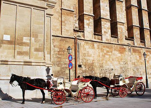Ramunas Bruzas - The Carriage Stop