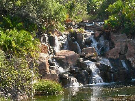 The cascade in South Africa by Hemu Aggarwal