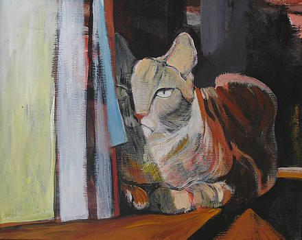 The Cat by Alicja Coe