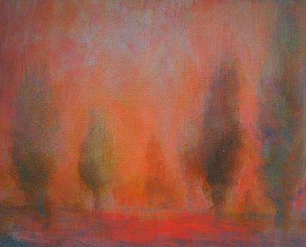 The Cedar Field by Bonnie Bardos
