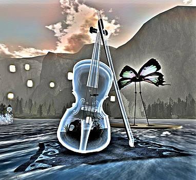 The cello and the birdfly by Lin Custodis