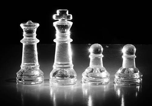 The Chess Family by Jeanne Sheridan