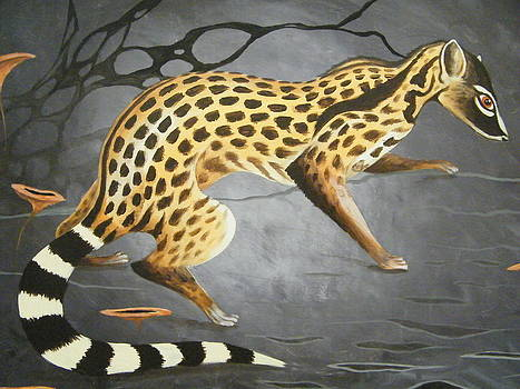 The Civet by Heather Pecoraro