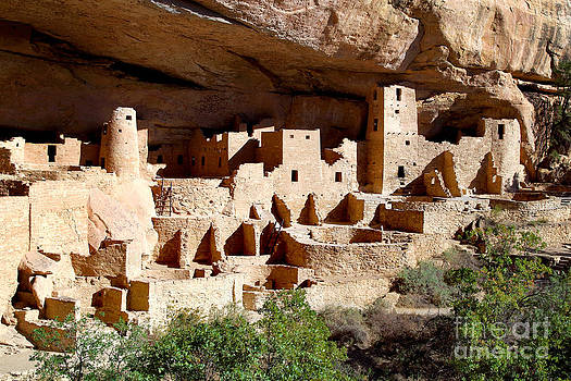 Douglas Taylor - THE CLIFF PALACE RUIN - MESA VERDE