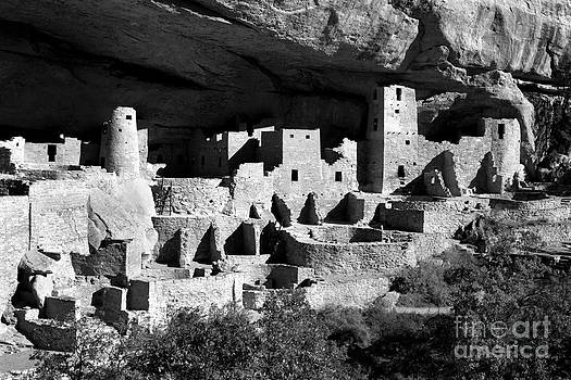 Douglas Taylor - THE CLIFF PALACE RUIN - SHADES OF GREY