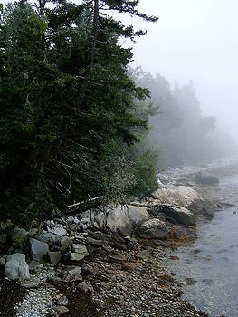 Photo- The Maine Coast by Lauren Acton