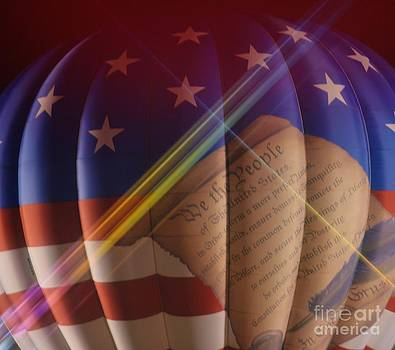 The Constitution by Janice Spivey
