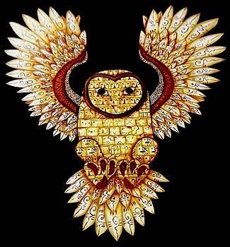 The Cosmic Owl  by Heriberto  Luna