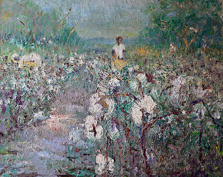 The Cotton Field by Benjamin Johnson