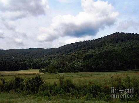 The Countryside by Eva Thomas