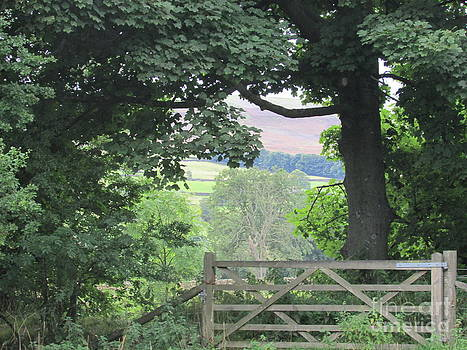 The countrysides View from the Gate by Sylvia Howarth