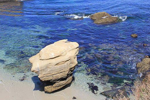 The Cove at La Jolla by Mari Cody