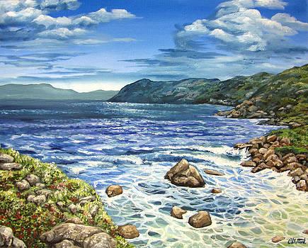 The Cove by Cassandra Gallant