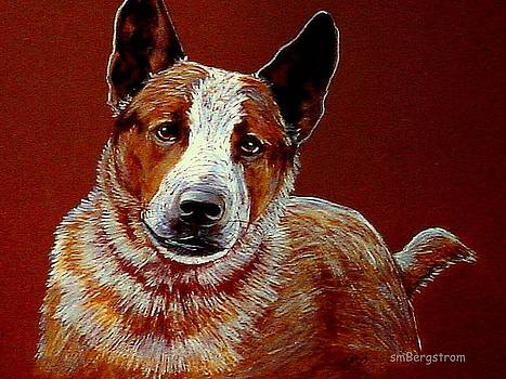 The Cow Dog by Susan Bergstrom