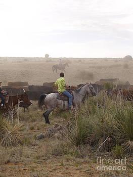 Craig Pearson - The Cowboys