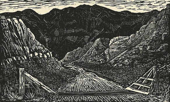 Maria Arango Diener - The Crossing