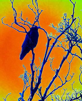 Algirdas Lukas - The Crow