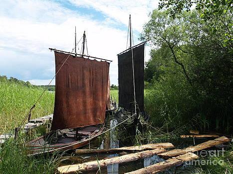 The Dark Sails by Robin Maria Pedrero