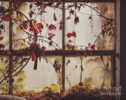 The Dark Window by Jillian Audrey Photography