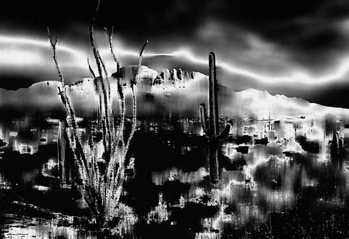 The Desert in Black and White by Barbara D Richards