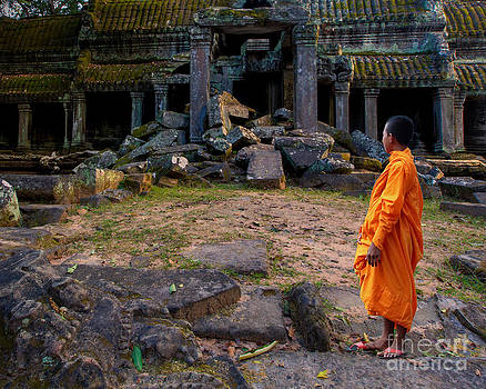 The destruction of Ta Prohm by Pete Reynolds