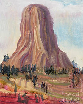 The Deviils Tower in  Wyoming by Suzanne Elliott