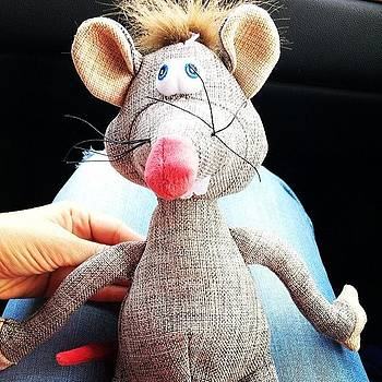 The Dogs' New Toy! A Rat!! We're by Ava Barbin-king