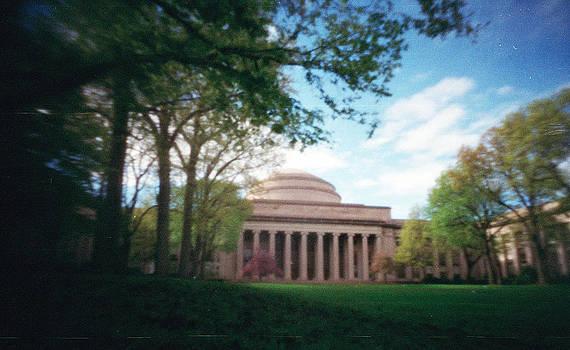 The Dome by Melissa Schumacher
