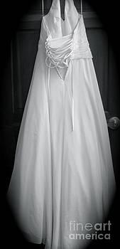 The Dress by Tina Shamay