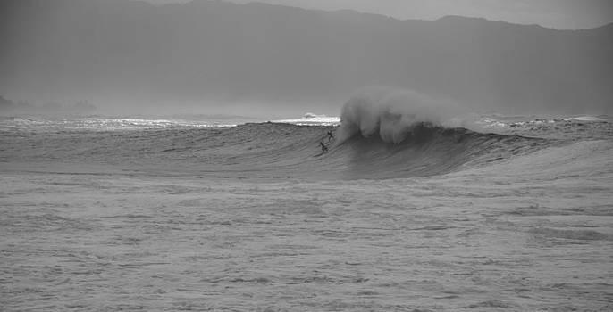 The Drop by Keith Harkin