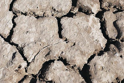 Ramunas Bruzas - The Drought