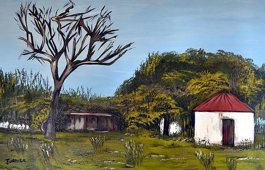 The Dry Tree Landscape by Juanita Mulder