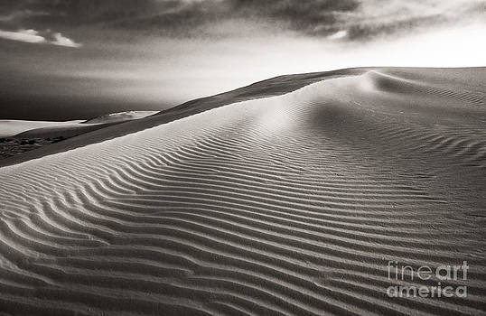 The Dune by Sherry Davis