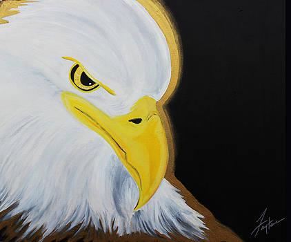 The Eagle by Faytene Grasseschi