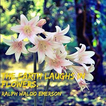 The Earth Laughs In Flowers. ~ Ralph by Gia Marie Houck