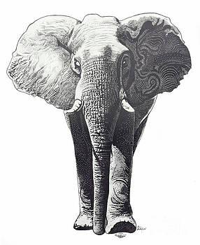 The Elephant by Kean Butterfield