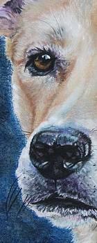 Elly Eye by Linda Eversole