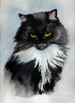 The Evil Stare by Jan Gibson