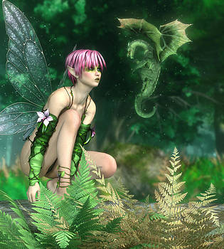 The Fairy and The Dragon by Melissa Krauss