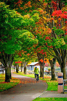 The Fall Bike Ride by Cassius Johnson