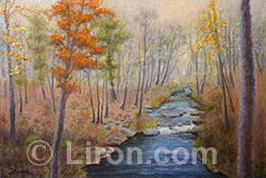The Fall of Autumn by Liron Sissman