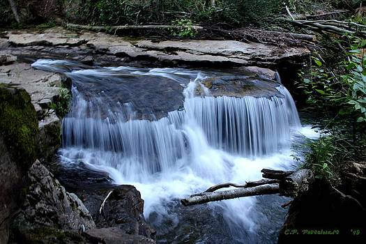 The Falls by Carolyn Postelwait