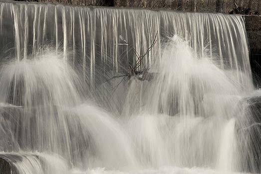 The Falls by Cindy Rubin