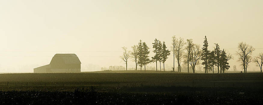 The Farm of Light and Shadow by James Blackwell JR