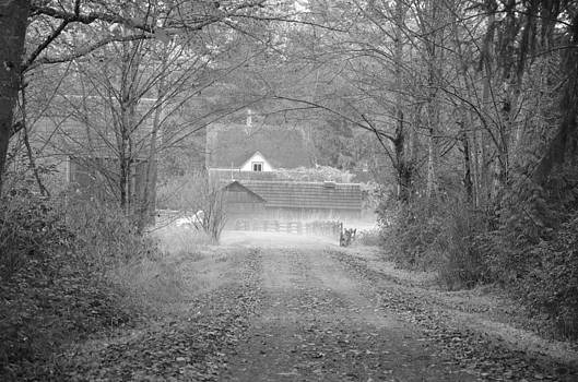 The farm by Tina Hannaford