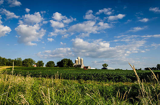 The Farm by Todd Heckert