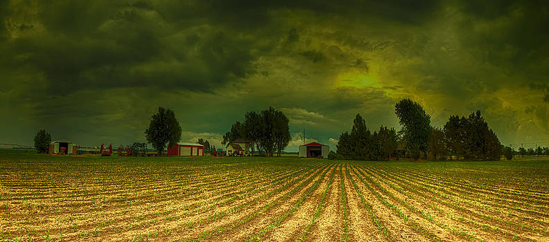 The field storm by  Caleb McGinn