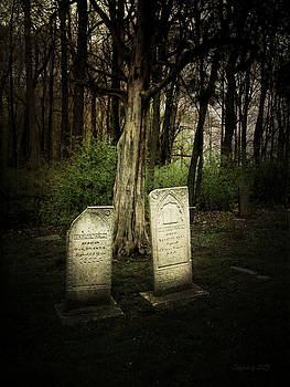 The Final Resting Place of Ambros and Brazilla Ivins by Cynthia Lassiter