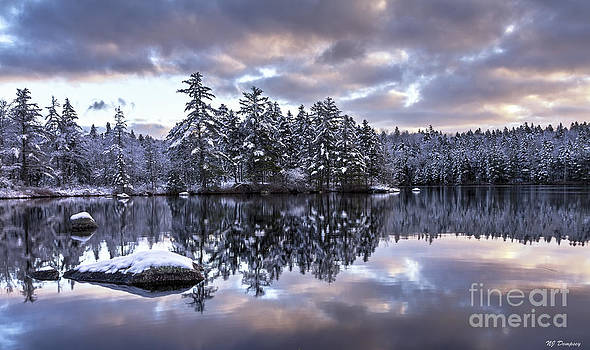The First Snow by Nancy Dempsey